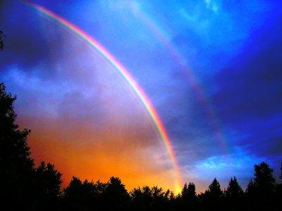 ocr-column-14-illustration-rainbow