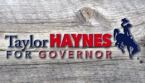 WTE3 Column #110 Illustration -- Taylor Haynes for Governor